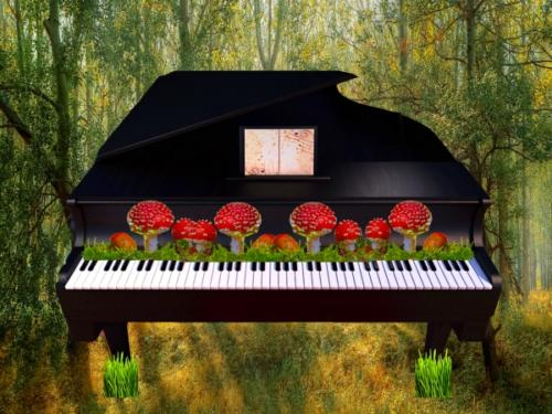 piano_in_the_forest