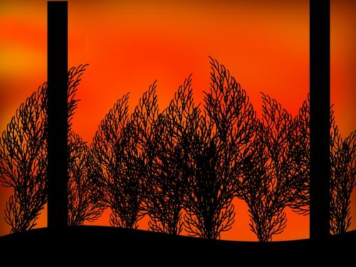 trees_sunset